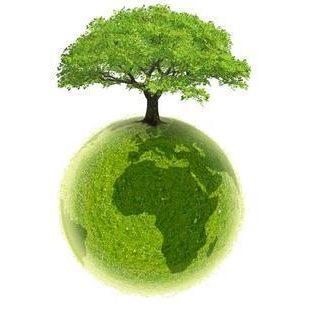 arbre-planeta